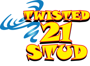 Twisted 21 STUD Logo V1.0